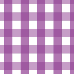 gingham 2in grape purple