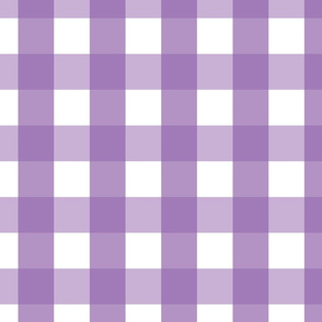 gingham 2in amethyst purple