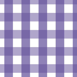 gingham 2in purple