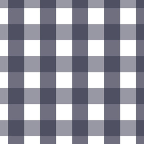 gingham 2in midnight blue