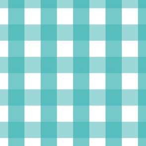 gingham 2in teal