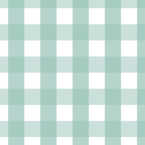 gingham 2in faded teal