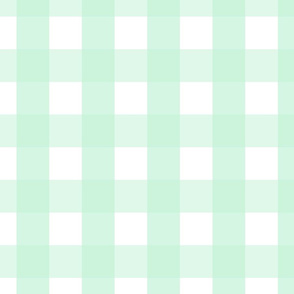 gingham 2in ice mint green
