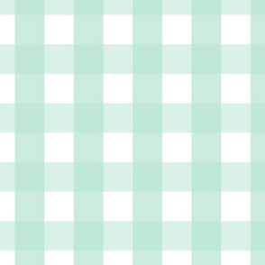 gingham 2in mint green