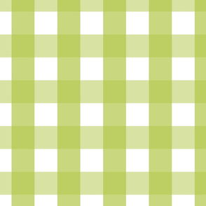 gingham 2in lime green