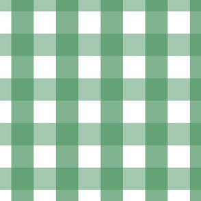 gingham 2in kelly green