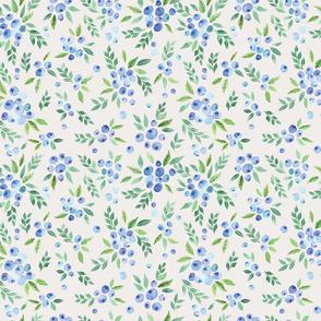blueberrybushes_mediumscale