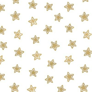 cookies stars on a white background