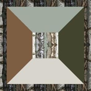 Birch Bark 6N