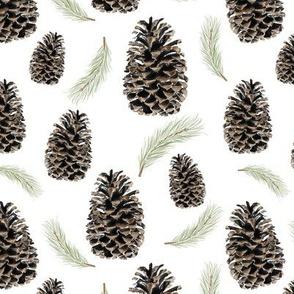 pine cones and needles - white