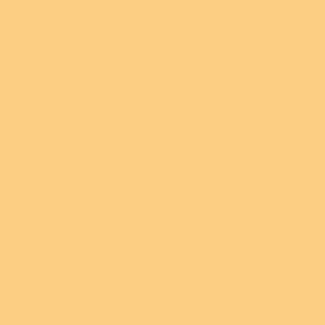 Magical Microscopic Forest Floor