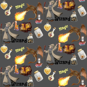 Dragon Wizard Magic
