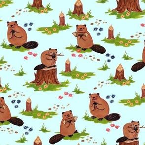 Beaver Helpers