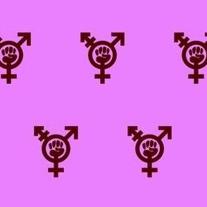 Transfeminism pink