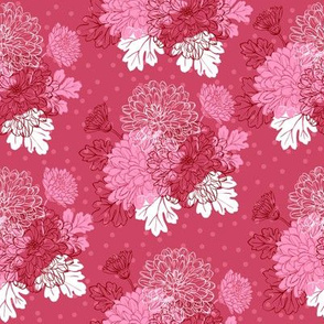 Decorative chrysanthemum - pink mauve
