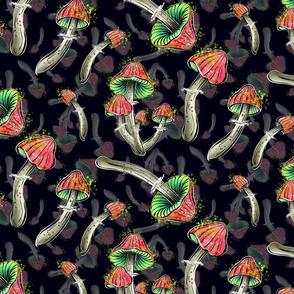 fly agaric, magic mushrooms, mushrooms, Witchcraft potion, mushroom pattern, poisonous mushrooms, potion, black background, Witchcraft, mushroom potion, fly agaric mush, mushroom, magical potion, magical mushrooms