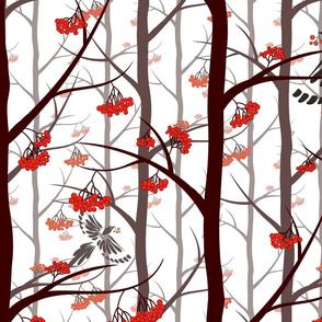 WOODLAND, woodland pattern, woods, winter woods, magpie, forest, rowan trees, rowan, woodland life, winter woodland.
