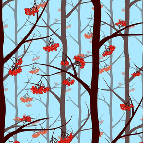 nature, woodland pattern, woods, winter woods, blue forest, mountain ash, fall forest, woodland, rowant tree berries, rowant trunks, rowanberry bunches, rowanberrys, rowant trees, autumn patter, nature fall