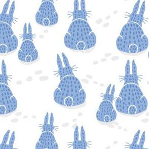Bunny Rabbit Winter Day