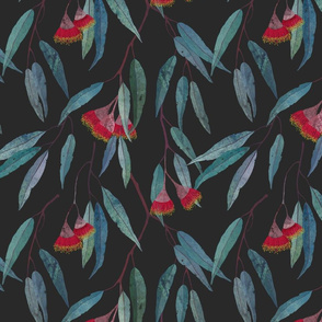 Eucalyptus leaves and flowers on dark grey /scale/