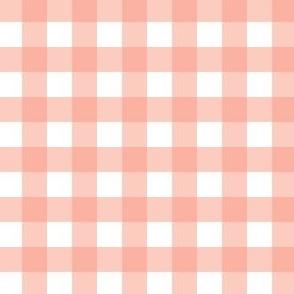 Gingham - Peach - Half Inch Check