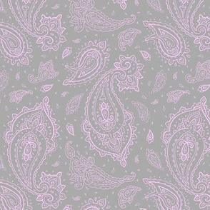 Bandana Paisley Pink on Gray DreamBox from Create Room Design Challenge