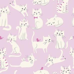 Cats01_lavender
