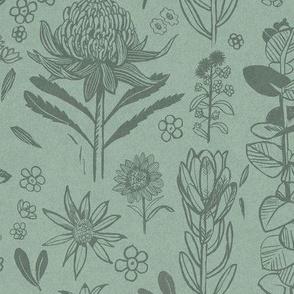 Australian_Wildflowers_Woodcut-Mid scale