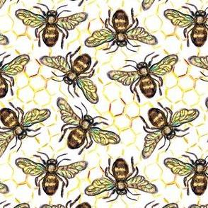 Micro world honey  bee