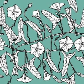 branch with leaves buds and flowers bindweed floral seamless pattern Leaves contours on light green blue background