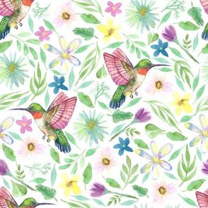 Hummingbirds  | Watercolor Florals