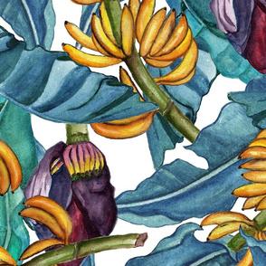 banana tropics-large scale
