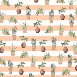 Plant lady | pattern | coral stripe
