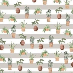 Plant lady | pattern | Grey Stripe