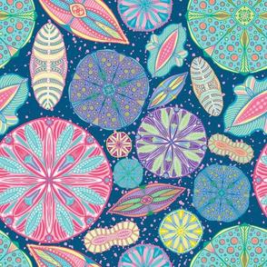 Microscopic Diatoms, multi colored
