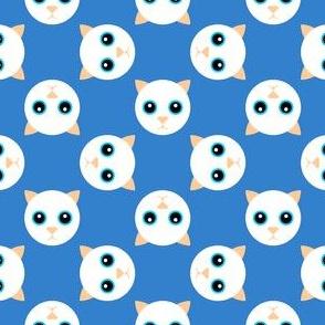 10889081 : cat polka