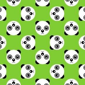 10889264 : panda polka