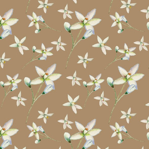 Blossom on beige