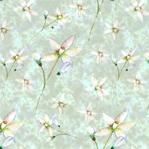 Blossom on Jade