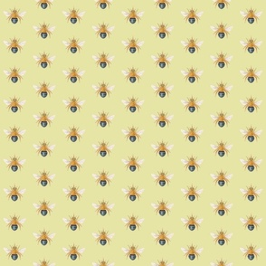 Blue Banded Bee Light Green Background