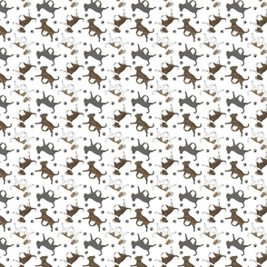 Tiny Trotting brindle smooth coat Chihuahuas and paw prints - white
