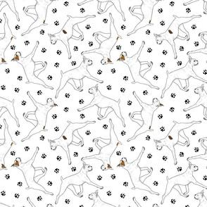 Trotting White Boxers and paw prints - white