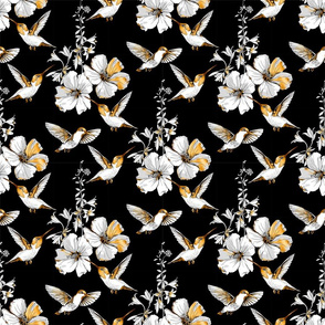 colibri black gold white