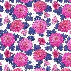 Chrysanthemum - purple pink
