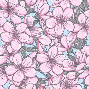 Cherry blossom - soft pink blue 1