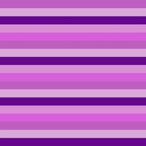 purple stripe 1