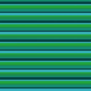 teal stripe 2