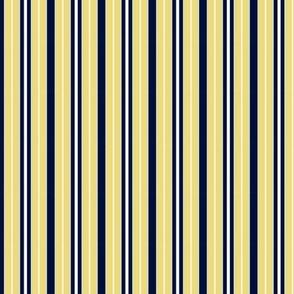 Desert Dawn multi stripe