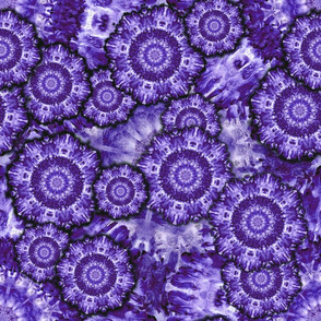 CELL-EBRATE MICROSCOPIC WORLDS PURPLE