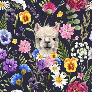 Wildflower Alpaca